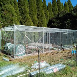 orchard enclosure garden enclosure mesh netting structure steel metalprotection garden plants cage bowral finigan wright fabrication, metal fabrication, moss vale robertson new south wales, robertson nsw, southern highlands steel, steel fabrication